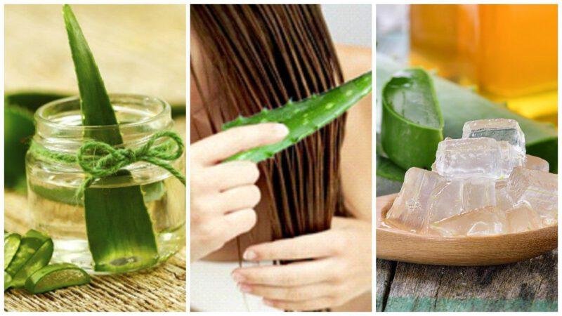 Remedios con aloe vera para la caída del cabello